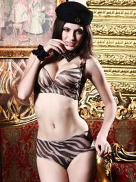 Charming Hot Sexy Women Deep Tiger Stripe Back Buckle Color Block Push-Up Bra Sets