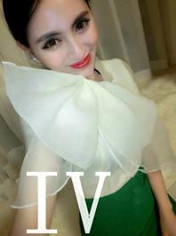 Fashion Club Lady Style Big Bow Design Round Collar Short Sleeve Two Piece Dress