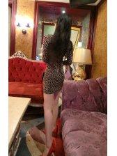 Closeout Sale Sexy Deep V Neck Leopard Pattern Dresses