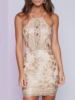 Sexy Backless Embroidery Mini Dress