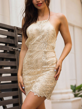 Backless Lace Embroidery Tie-wrap Halter Mini Dress
