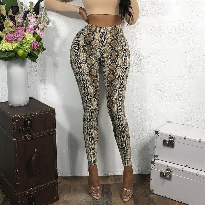 Snake Printed High Waist Skinny Sporty Pants