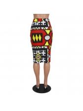 Vintage Style Geometric Printed High Waist Skirt