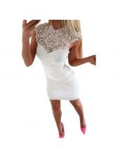 Stand Neck Lace Panel Sleeveless Dress