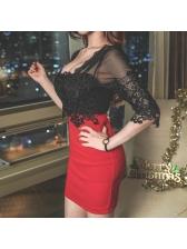 Lace Contrast Color Bodycon Dress