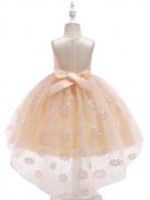 Sweet Embroidered Gauze Girl Princess Dress