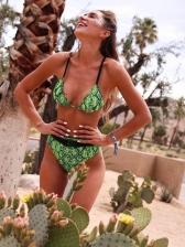 Sexy V Neck Snake Printed High Waist Bikini