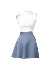 Graceful Fitted Sleeveless Crop Top Skirt Set