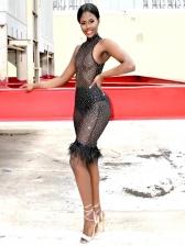 Sexy Gauze Perspective Feather Hem Sleeveless Dress
