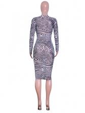 Fashion Zebra-stripe Long Sleeve Bodycon Dress
