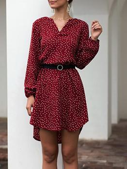 Lantern Sleeve Long Sleeve Polka Dots Dress