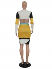 Contrast Color Long Sleeve Crop Top And Skirt