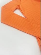 Crew Neck Solid Long Sleeve Mini Dress