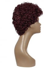 Fashion Ladies Wine Red Afro Curl Short Synthetic Wigs