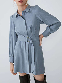 Single-Breasted Blue Long Sleeve Shirt Dress