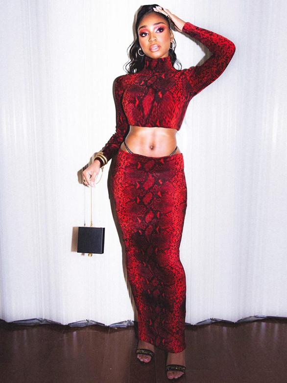 Snake Print High Neck Crop Top And Long Skirt Set
