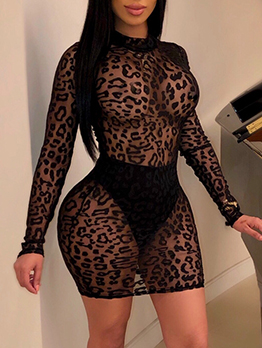See Through Mini Long Sleeve Lace Dress