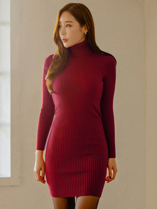 Slim Fit Solid Turtle Neck Sweater Dress