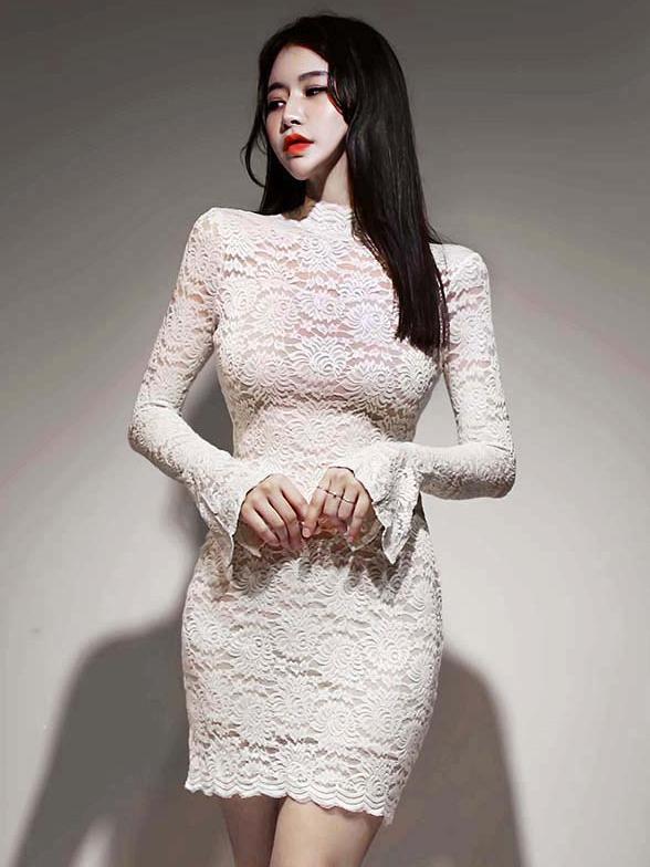 Mock Neck Flare Sleeve Long Sleeve Lace Dress