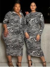 Animal Print Plus Size Long Sleeve Dresses