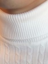 Leisure Solid Long Sleeve Turtleneck Sweater