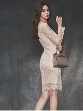 Slim Fit Eyelash Lace Trim Long Sleeve Dress