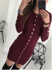 Single-Breasted Solid Long Sleeve Knit Dress