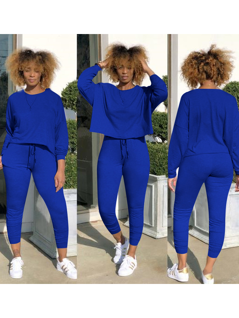 Casual Solid Long Sleeve 2 Piece Outfits