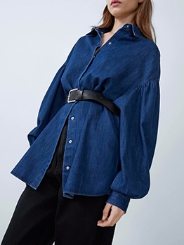 Spring Long Solid Denim Blouse