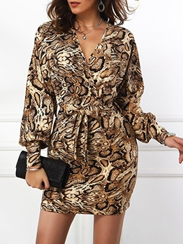 Bat Sleeve V Neck Tie-Wrap Leopard Dress
