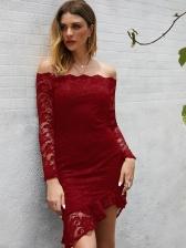 Boat Neck Long Sleeve Bodycon Lace Dress