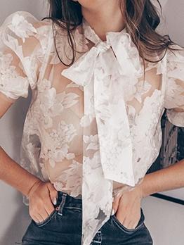 Stylish See Through Tied Neck Short Sleeve Blouse