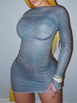 Print Crew Neck Skinny Long Sleeve Mini Dress