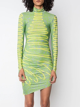 Turtle Neck Contrast Color Printed Long Sleeve Dress