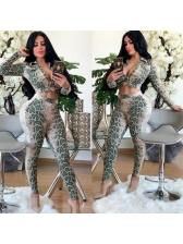Snake Print Long Sleeve Two Piece Pants Set