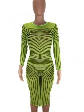 Sexy Gauze Long Sleeve Bodycon Dress