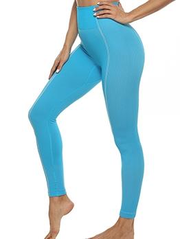 Sporty Pure High Waist Quick-Dry Yoga Leggings