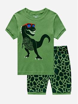 Cute Dinosaur Pattern Crew Neck Boy Clothing Set