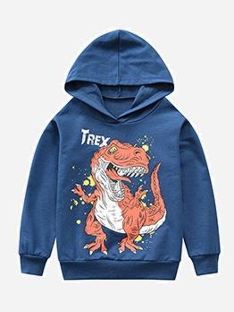 Cotton Dinosaur Printed Boys Hoodies