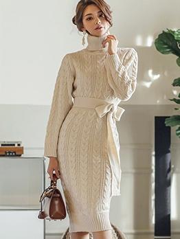 Stylish Solid Turtle Neck Sweater Dress