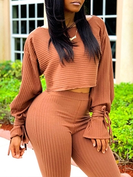 Casual Long Sleeve Solid 2 Piece Pants Set