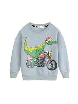 Cartoon Dinosaur Print Boys Crew Neck Sweatshirt
