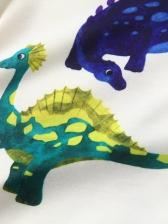 Cartoon Dinosaur Print Two Piece Boys Set