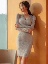 Elegant V Neck Lace Long Sleeve Bodycon Dress