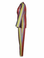 Hot Sale Multicolored Printed Casual Trouser Suits