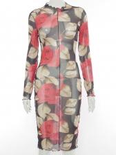 Spring Rose Long Sleeve Print Dress