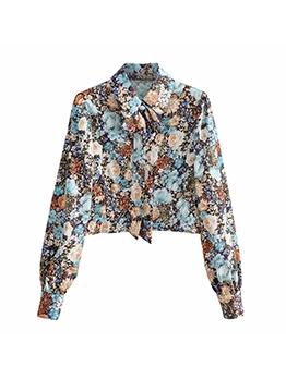 Fashion Novelty Print Long Sleeve Short Blouse