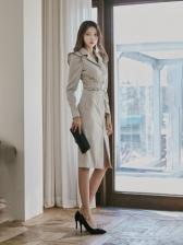 Autumn Korean Style Notch Collar Long Sleeve Dress