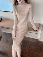 Solid Autumn Thicker Turtle Neck Long Sleeve Dress