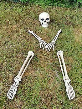 Halloween Simulation Skull Tricky Five-Piece Set